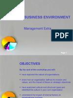 business environment-1