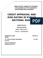 Report_-_Credit_Appraisal_PNB