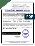 CONSEJO COMUNAL FORMATO MODELO EJEMPLO CARTA AVAL