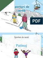 sporturi de iarnaăâ