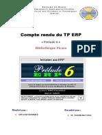 Compte rendu du TP ERP (GRICH MOHAMMED)