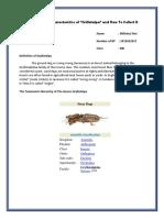 Morphological Characteristics of Gryllotalpa