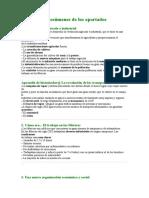 Tema 6 de sociales de 6º primaria Vicens Vives