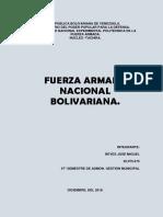 fuerza-armada-nacional-bolibariana-fanb-venezuela
