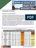 NOVIEMBRE 2020.pdf