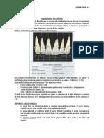 Criterios estetica oral