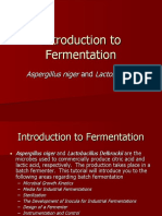 Fermentation2004