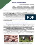 Socio 4 - Resumo Socio desenvolvimento crises do capitalismo parte 1 - Pf Jeane