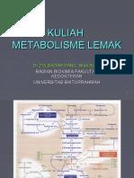 METABOLISME LIPID3