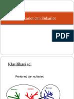 prokarioteukariot