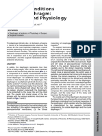 anatomia y fisiologia del diafragma