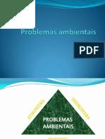 5 Problemas ambientais