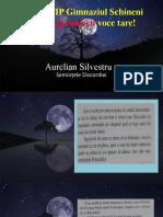 A.Silvestru