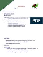 proiect CLR clasa II- Buburuza