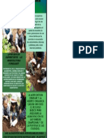 Agricultura Familiar y Huerta Casera