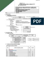 FORMATOS_EJECUCION_FE_02_al_12_y_14(1) RESIDENTE