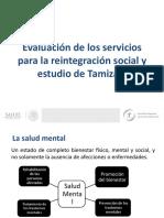 MARIO GONZALEZ-Evaluacio´n de los servicios para la reintegracio´n social y estudio de Tamizaje (1)