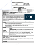Ruiz.M 3726 Informe de Sistemática Vegetal.
