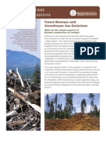 Forest Biomass and Air Emissions