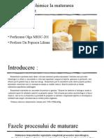 Procese Biochimice La Maturarea Branzeturilor