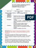 Formato_explicaciòn_guìa
