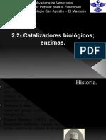 2.2- Catalizadores biológicos; enzimas.