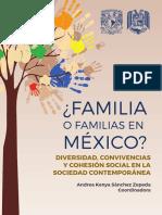 Familia o Familias en Mex.