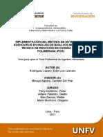 UNFV_Rodriguez_Lazaro_Eder_Luis_Titulo_Profesional_2017