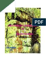 Classif.macicos Rochosos 1