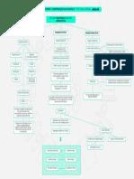 Mapa Mental - A Destruição Da Política - Parte 1