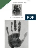 Charlotte Wolff 'La Mano Y Su Lenguaje' Appendix (Картинки к книге)