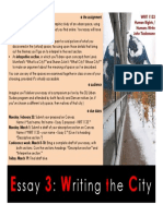 WRIT 1133, Winter 2021, Essay 3 Assignment