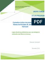 lignes_diretrices_pour_une_strategie_de__025498