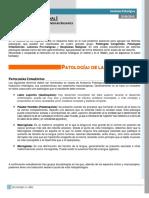 Clase 028 Anatomía Patológica - Patología Cavidad Oral y Glándulas Salivales