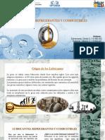 Presentación LUBRICANTES 1