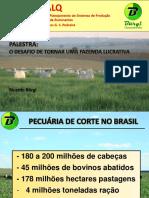 -O DESAFIO DE TORNAR UMA FAZENDA LUCRATIVA Burgi 2014 - prova 2