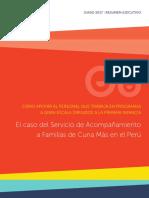 Executive Summary Spanish Cuna Mas Country Study