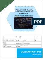 LABORATORIO N°3 TIPOS DE DATOS - ALIZON CUELA