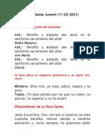 Hora Santa Juvenil (11-02-2021) - Ricardo Morillo