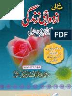Misali Azdawaji Zindagi key Sunehri Usool, Islam aur Azdawaji Zindagi,Shaykh Zulfiqar Ahmad (db)