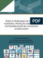 Temas e Problemas de Direitos Humanos Pr