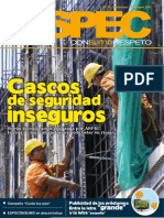 Informe ASPEC Diciembre 2010