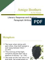 Amigo_Brothers Report Example