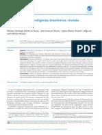 2020. Suicídio e Povos Indígenas Brasileiros