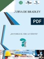 CURVA DE BRADLEY