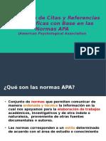 Elaboración Citas y Referencias Apa