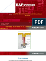 14 Patología general y estomatologica. Semana 14