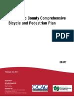 CBPP_Public_Review_Draft_Main_Report_2_24_2011