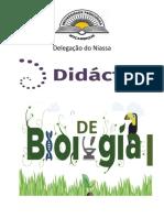 Bbrochura DBI 2018 II(1)