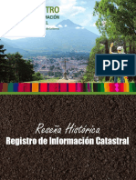 _Reseña Histórica de RIC
